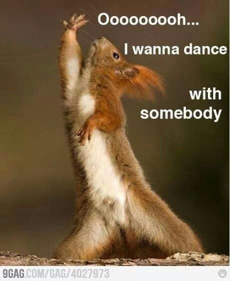 Wanna Dance Somebody Funny Pic