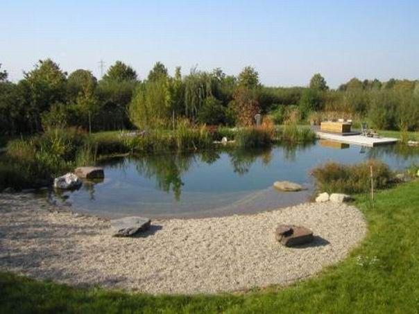Natural Pond Ideas