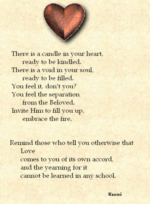 Maulana Rumi Quotes About Love
