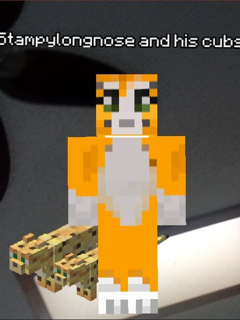 Real Life Stampy Cat Minecraft