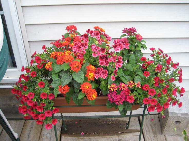 Deck Railing Planters Ideas
