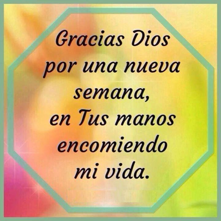 Por De El Amor Dios Mi Vida Gracias