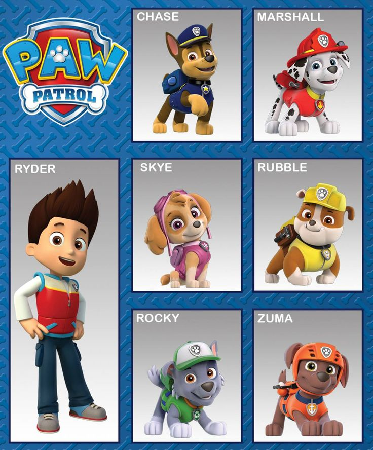 Names Dog Paw New Patrol