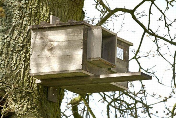 Barn Owl House Houses Best Wild Bird Feeders Birdhouses ...