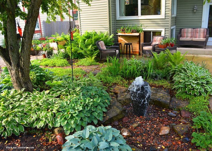 Backyard Pond Regulations