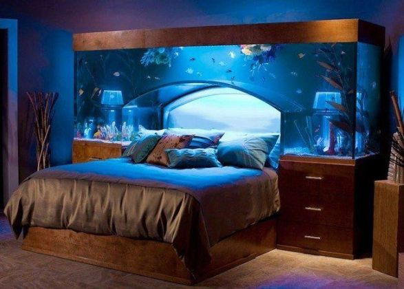 detail image get it  that  fish tank headboards for sale headboard     17 best ideas about fish tank bed on pinterest amazing fish tanks fish tank  table and