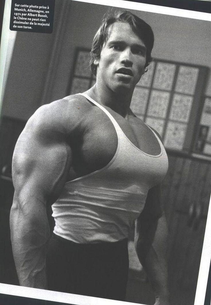 Pumping Iron Schwarzenegger Arnold Quotes