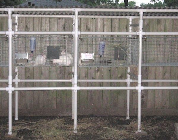 Rabbit Nesting Box Plans Building