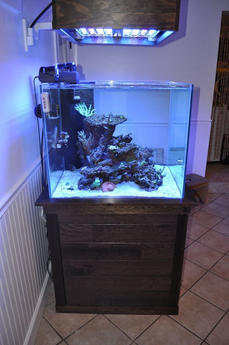 Reef Led Lights
