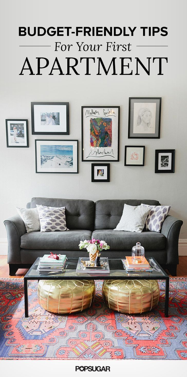 Grey Pull Out Couch