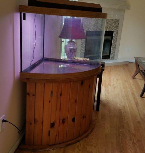 120 Gallon Corner Aquariums