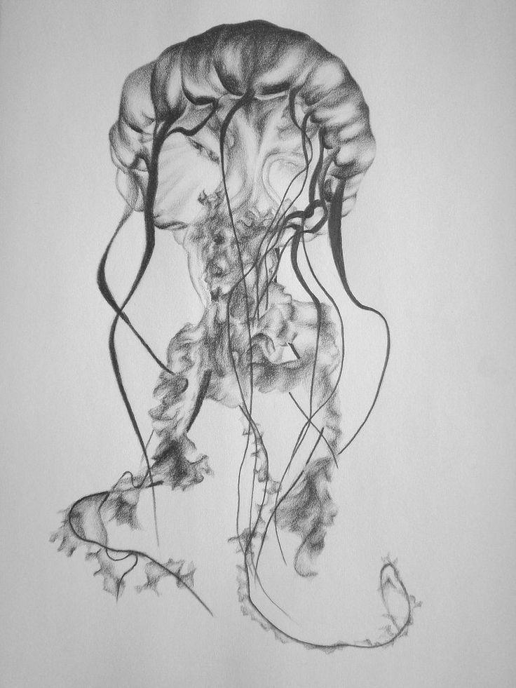 Easy Draw Box Jellyfish