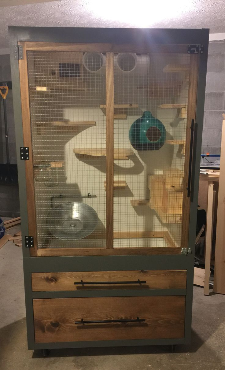 Bookcase Guinea Pig Cage