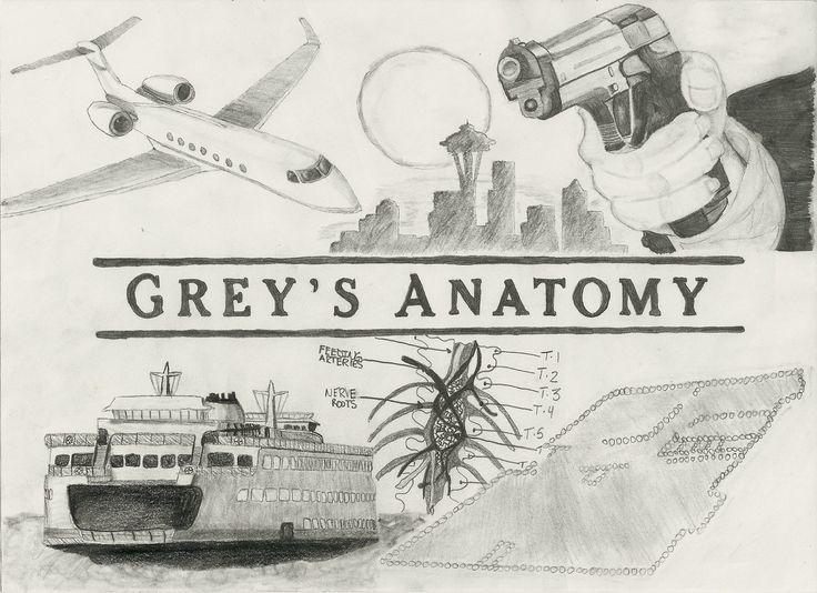 Grays Anatomy Drawings