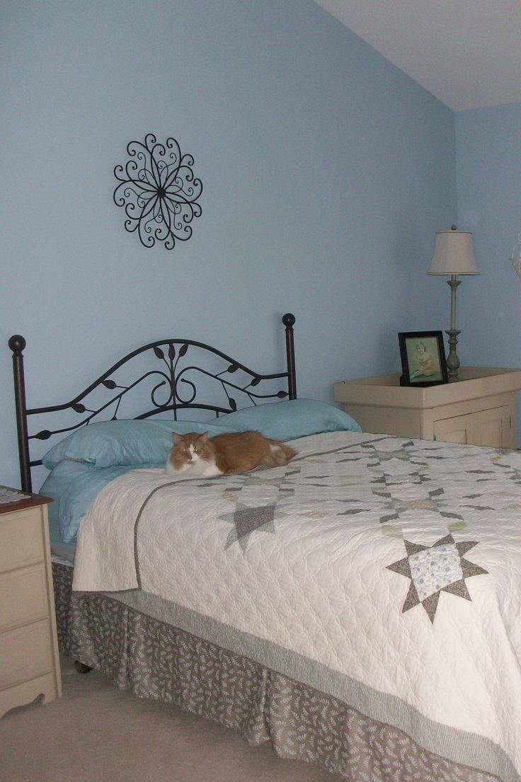 Bedding Color Walls Black Bedroom And What White