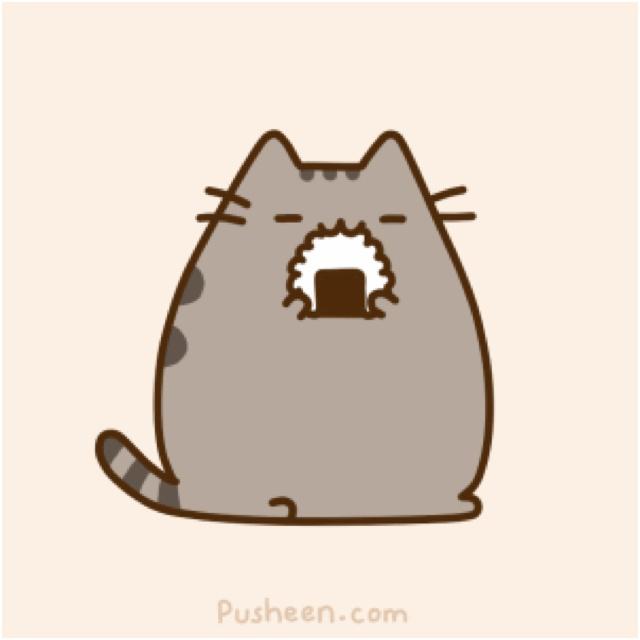 Kittens Eating Cake Funny