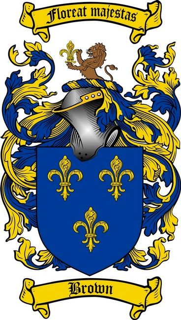 Paradis Coat Arms Shield Meanings