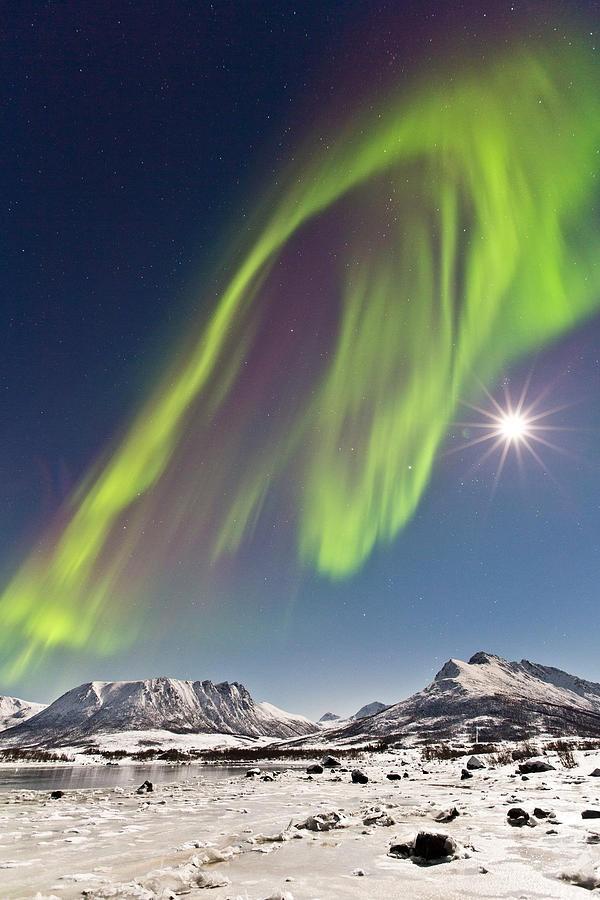 Balto Northern Lights