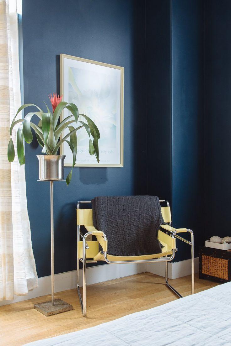 Indoor House Plant Tree