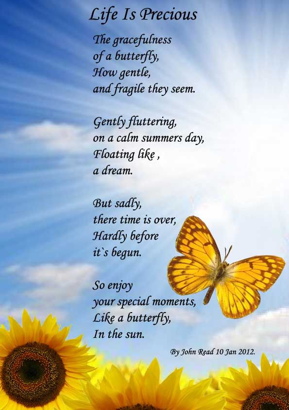 Short Life Quotes And Poems