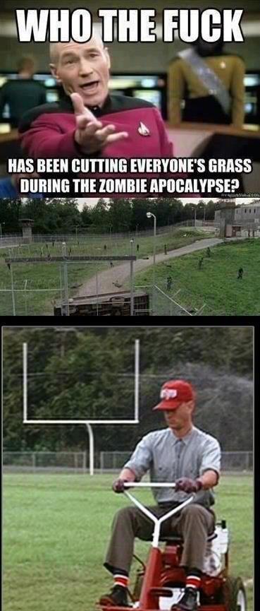 Forest Gump Images Zombie Hilarious