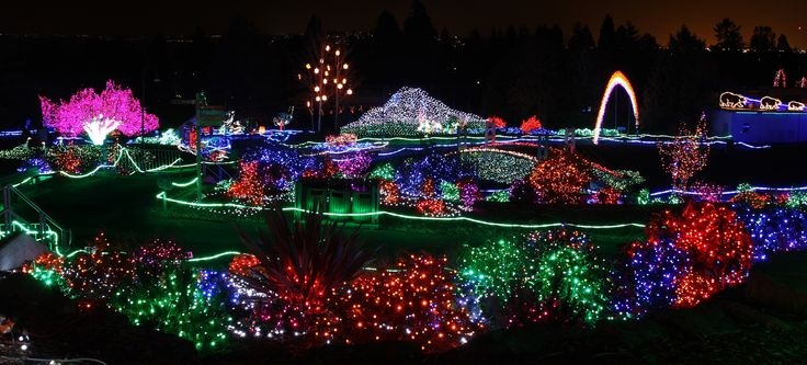 Zoo Lights Hours
