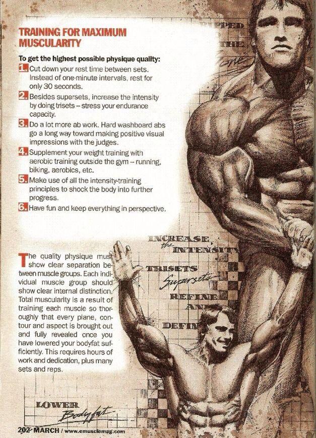 Arnold schwarzenegger blueprint workout malvernweather Choice Image
