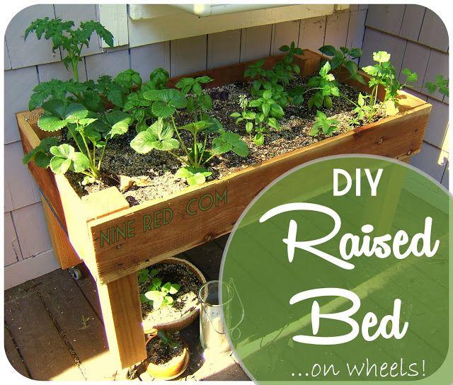 Vegetable Planter Box Plans