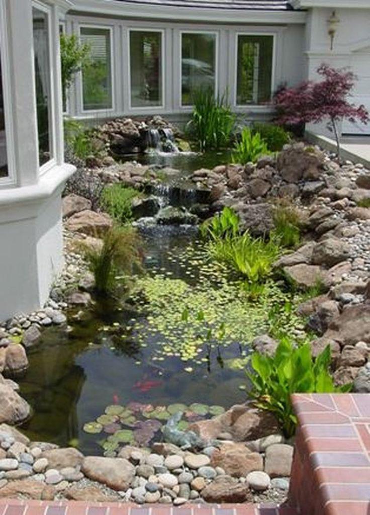 Pond Design Turtles