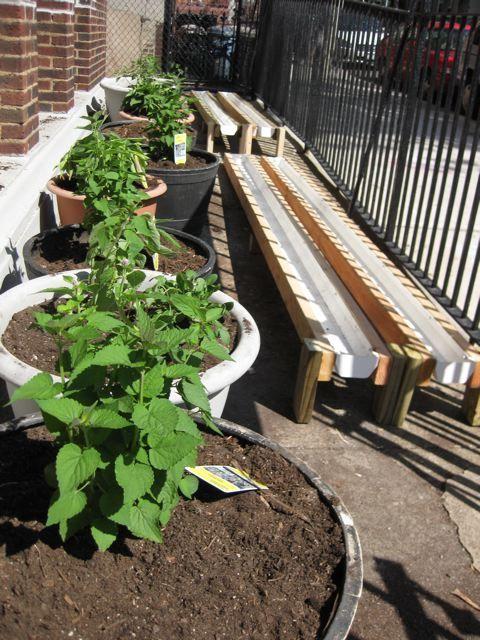 Raised Vegetable Garden Deck