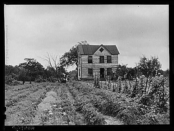 Colonial Williamsburg Farms