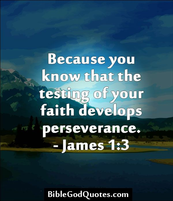 17 Best images about Perseverance on Pinterest   Daily ...
