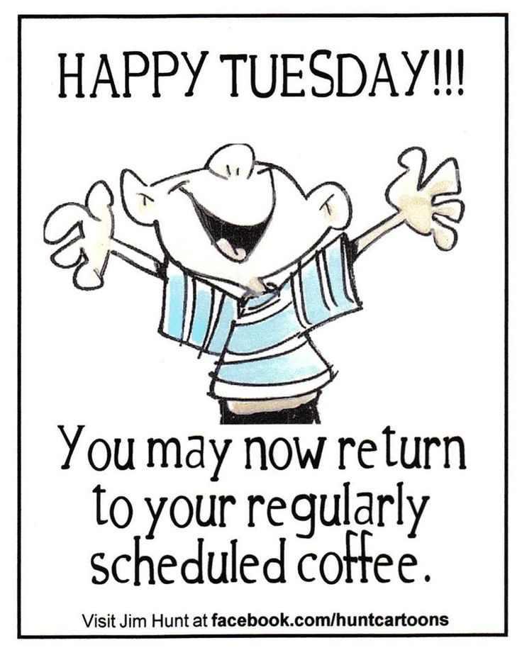 Good Morning Coffee Tuesday Funny
