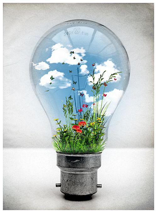 Light Best Buy Bulbs Place