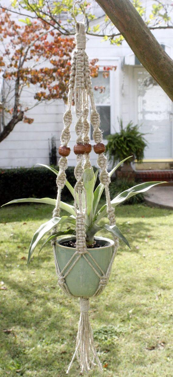 Good Plants Indoor Hanging Baskets