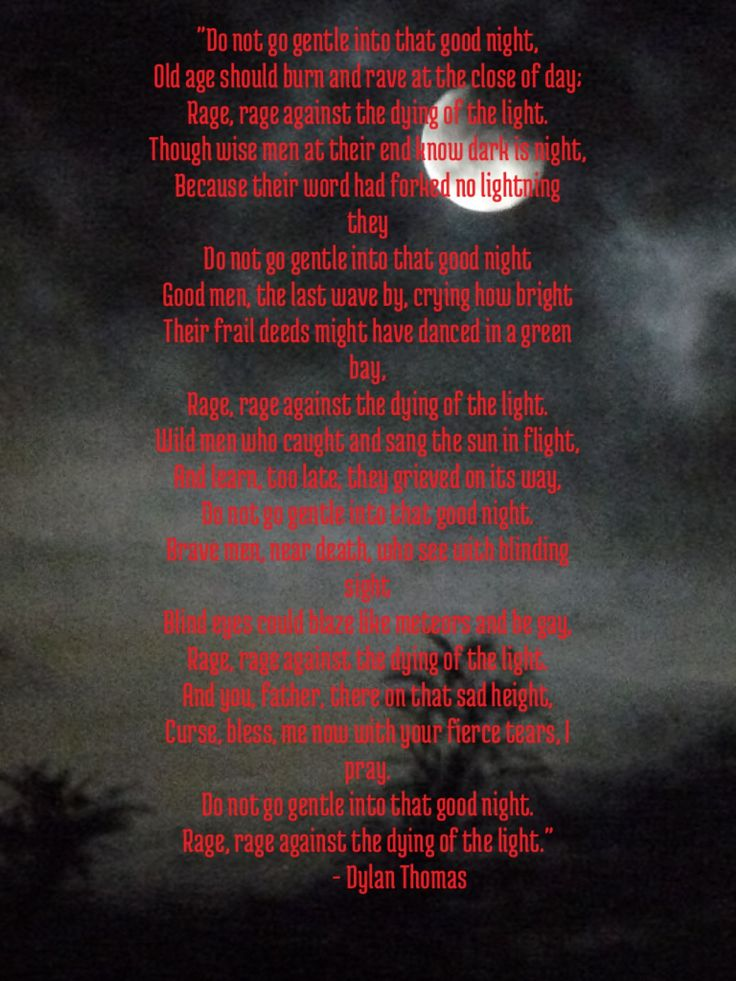 Rage Rage Against Dying Light Poem Meaning