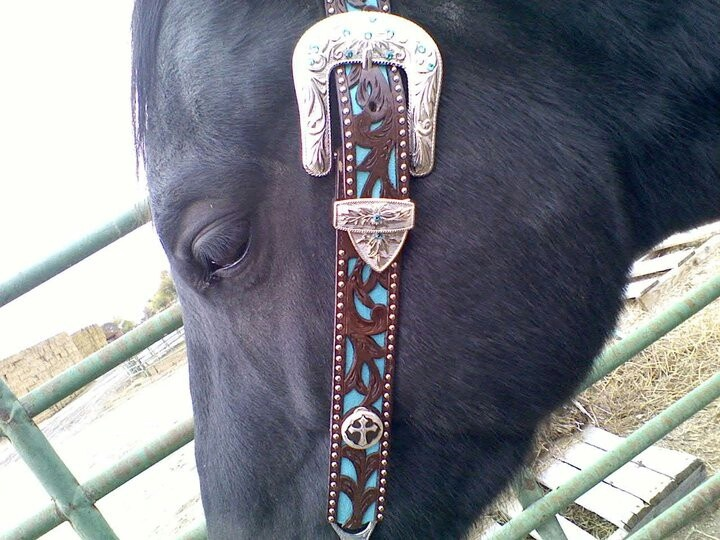 Headstalls Concho Custom