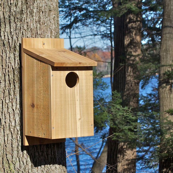 1000+ ideas about Owl House on Pinterest | Owl box ...