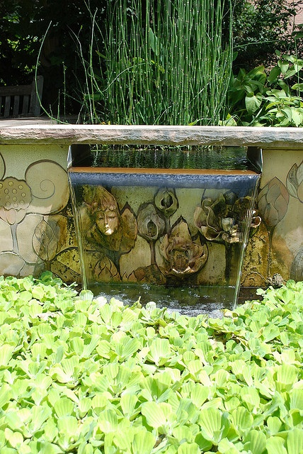 Pond Fish Design Ideas Small