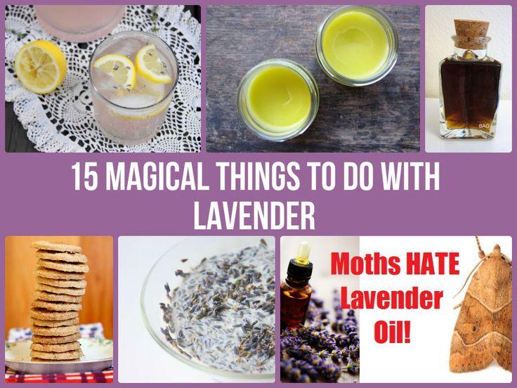 Make Lavender Things