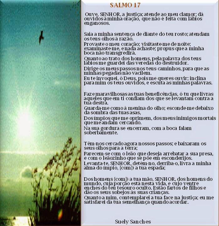 Salmos De La Biblia Catolica