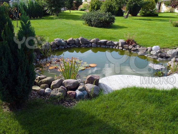 Landscaping Around Ponds