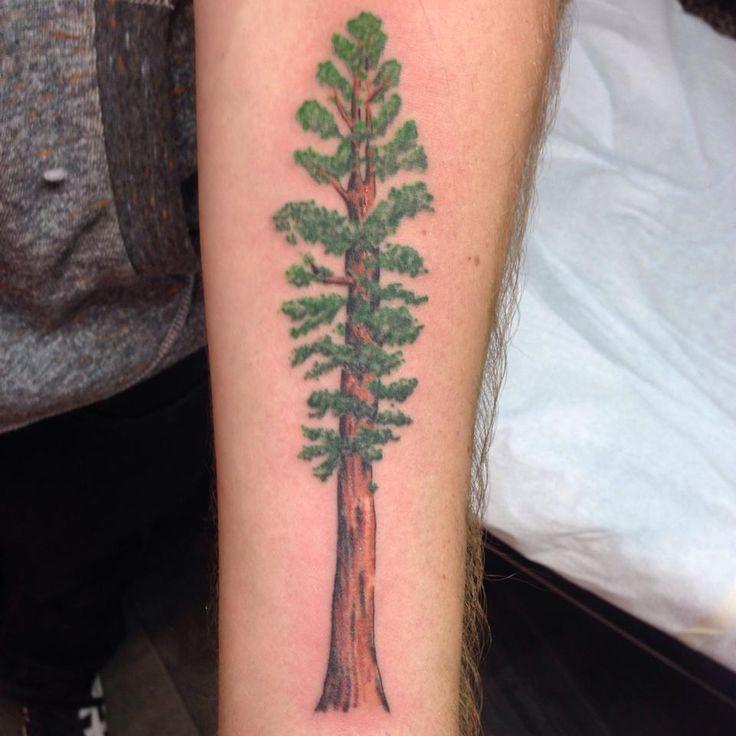 California Redwood Tattoo
