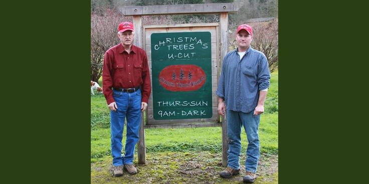 Northern Lights Christmas Tree Farm Pleasant Hill Oregon