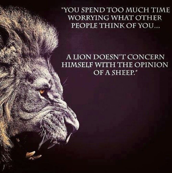 Lion Quotes Leo Sayings And