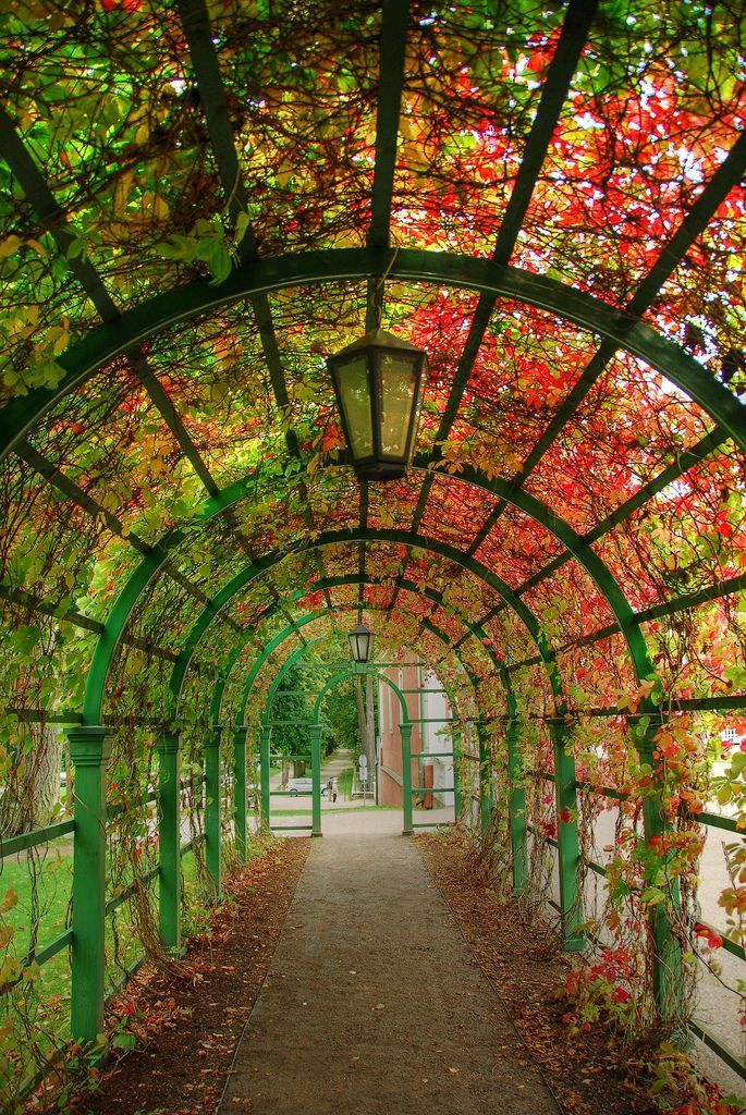 Tunnel In The Gardens At Kadriorg Palace In Tallinn