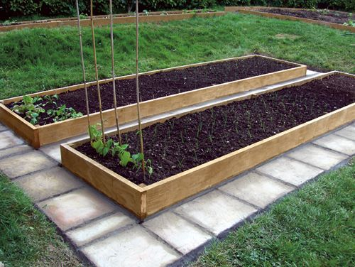 Raised Vegetable Garden Size