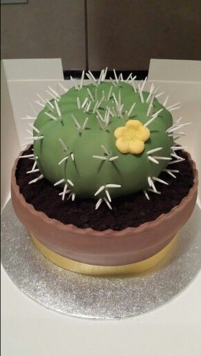 208 Best Images About Cactus Cake On Pinterest Sheriff