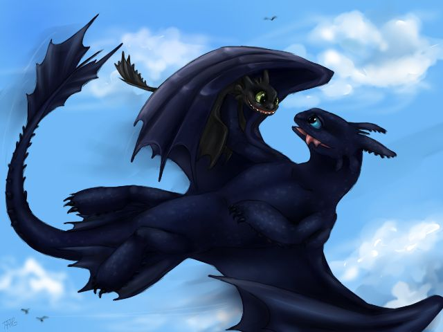 Pictures Toothless Dragon And His Girlfriend