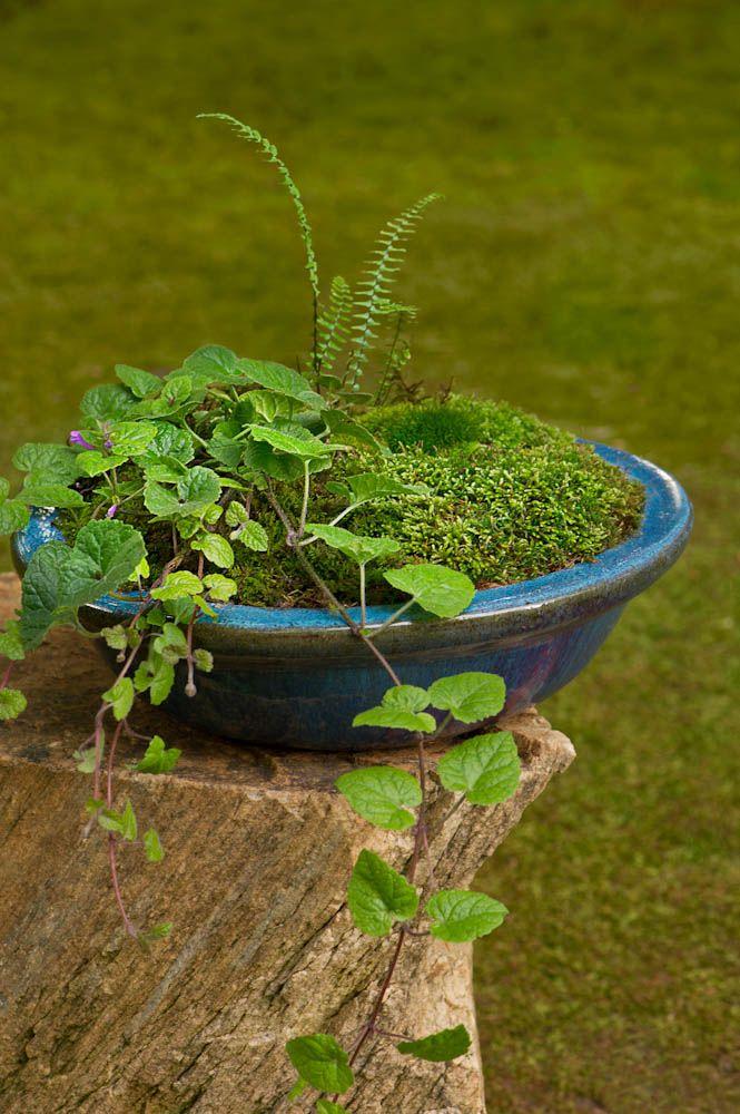 Raised Garden Soil Mixture